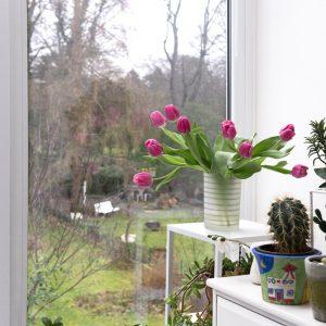 Blick aus Wintergarten mit Blumen